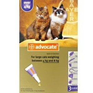 advocate flea treatment instructions