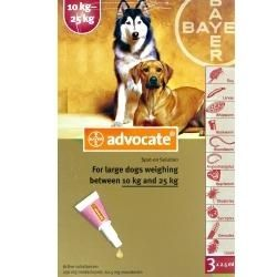 Advocate Large Dog 10-25kg