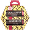 Burt's Bees Tinted Lip Balm Duo In Red