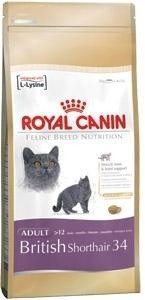 Click to view product details and reviews for Royal Canin Feline Breed Nutrition British Short Hair.
