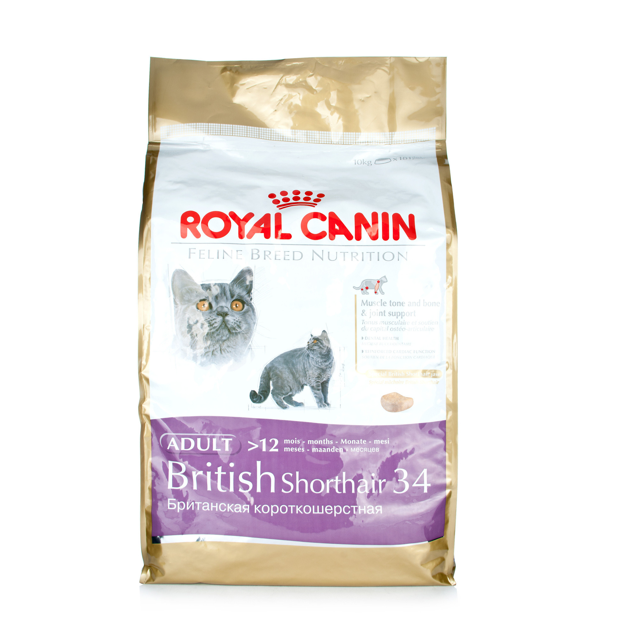 royal canin british short hair 34 10kg cat food chemist direct. Black Bedroom Furniture Sets. Home Design Ideas