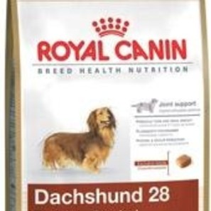 buy royal canin breed health nutrition dachshund adult. Black Bedroom Furniture Sets. Home Design Ideas