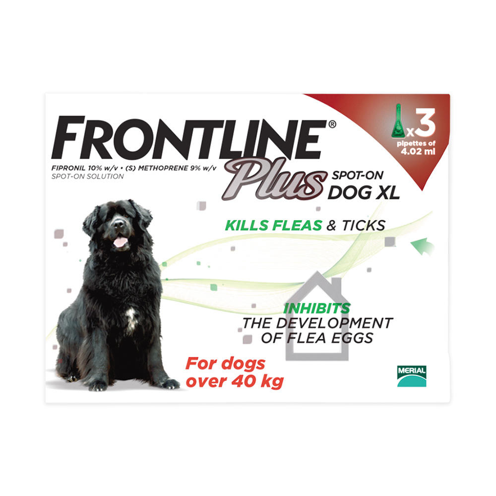 Cheapest Frontline Large Dog