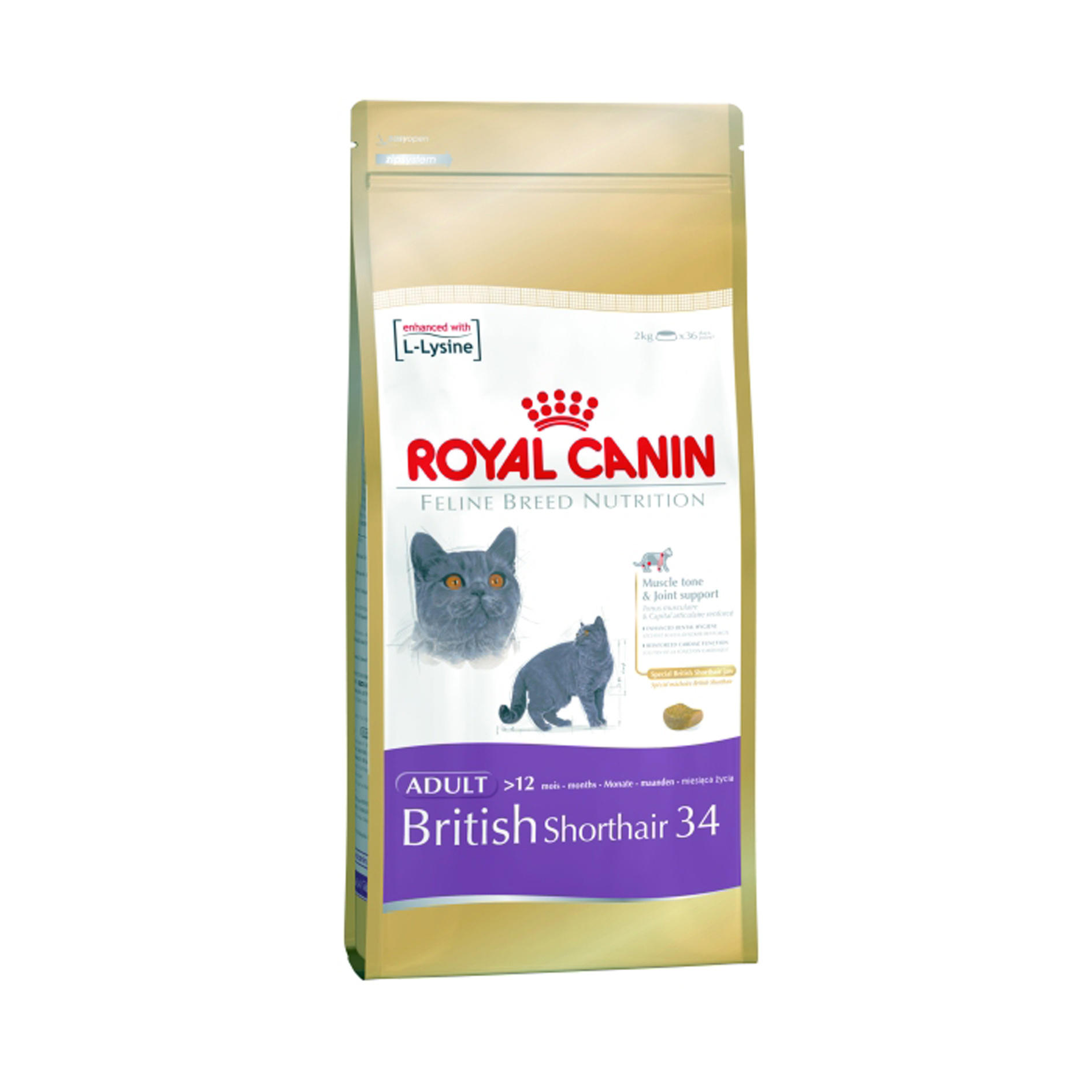 royal canin feline breed nutrition british shorthair adult 34 ebay. Black Bedroom Furniture Sets. Home Design Ideas