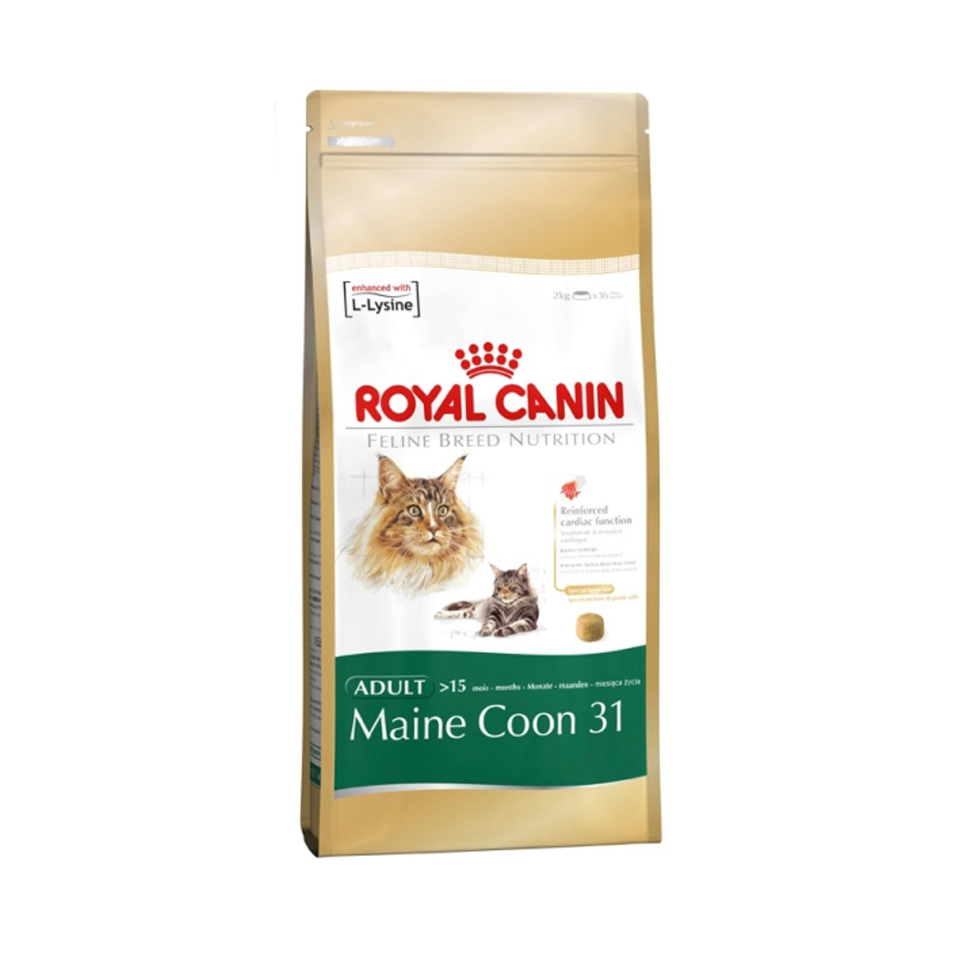 Click to view product details and reviews for Royal Canin Feline Breed Nutrition Maine Coon 31.