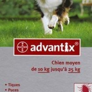 Advantix 250 For Dogs 10-25kg