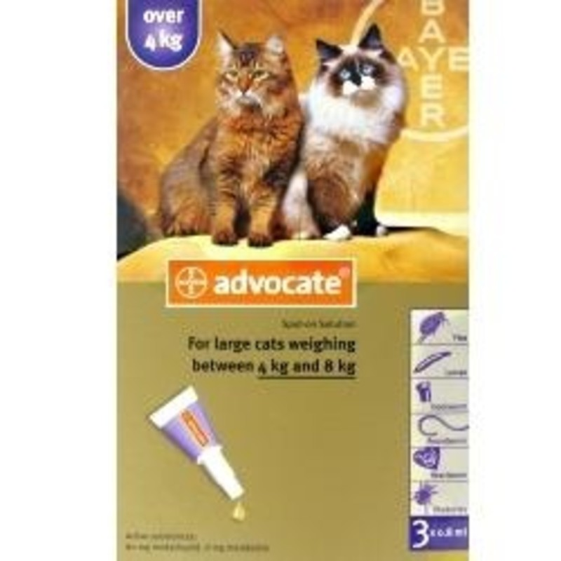 Advocate Spot On Solution For Large Cats Chemist Direct