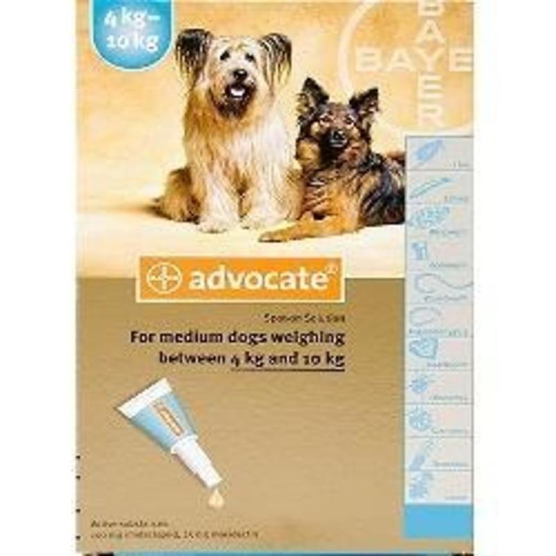 advocate dog treatment instructions