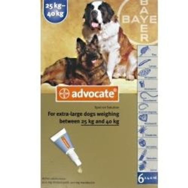 Advocate Dog Treatment Review