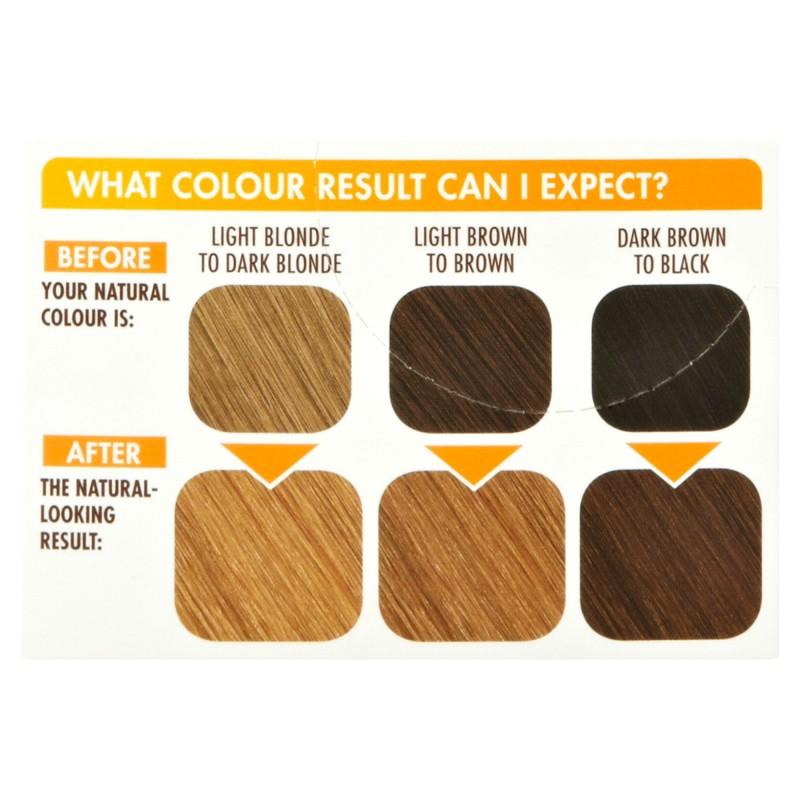 Garnier Belle Color 73 Natural Dark Golden Blonde Permanent Hair Dye