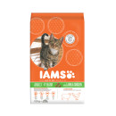 IAMS Adult Cat Lamb and Rice