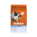 IAMS Adult Cat With Fish& Chicken