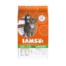 IAMS Cat Food Lamb
