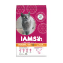 IAMS Cat Mature and Senior Chicken