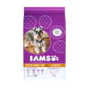 IAMS Dog Senior and Mature