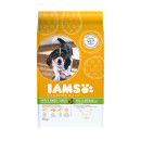 IAMS Puppy/Junior Dog Small/Medium Breed