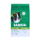 IAMs Dog Adult Small/Medium Breed