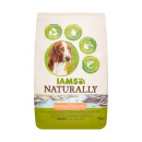 IAMs Naturally Adult Dog Salmon and Rice