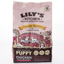 Lilys Kitchen Perfectly Puppy Grain Free Dry Food