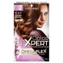 Schwarzkopf Colour Expert 5.67 Auburn Brown Hair Dye